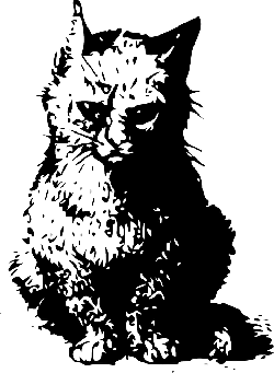 cat, silhouette, illustration, cats, kitten, pet
