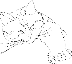 cat, simple, outline, drawing, sleeping, only, free