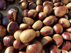 chestnuts, sweet chestnuts, fruits, market, sale, food