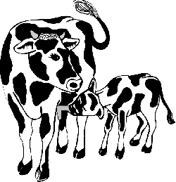 child, barn, farm, cow, animal, mother, feeding, and