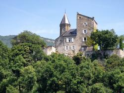 chindrieux, france, castle, architecture, historic