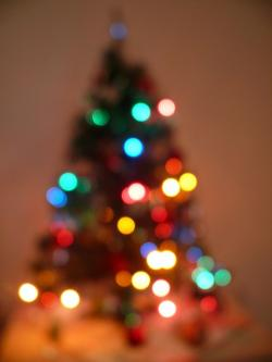 christmas, tree, lights, winter, holiday, family