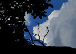 clouds, edgeging, light, white, shades of shadow, blue