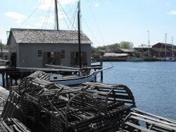 coast, bay, water, fishery, fish, harbor, cages