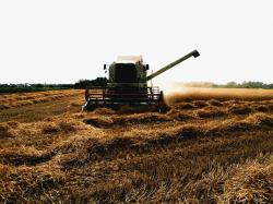 combine, harvester, harvesting, wheat, crop, farm