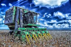 cotton harvester, agriculture, farm, rural, sky, clouds