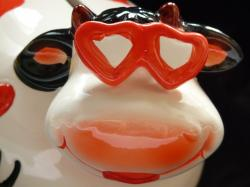 cow, goggles, herzchen, portrait, funny