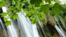 croatia, lake, waterfall, nature, plitvice, zieloe?