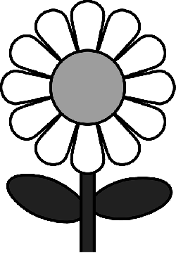 daisy, flower, plant, nature