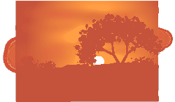 dawn, dusk, twilight, sunset, sunrise, tree, desert