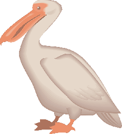 digital, bird, wings, art, pelican, animal, beak
