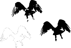eagle, bird, wings, flying, silhouettes, feathers