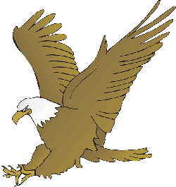 eagle, wings, animal, beak, claws, hunting, feathers