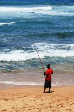 fisherman, man, fishing, alone, beach, sand, shore, sea