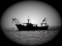 fishing, fishing boat, shadow, silhouette, backlight