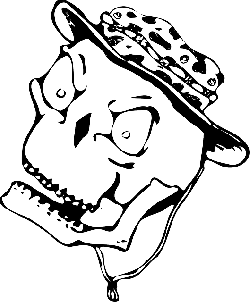flat, icon, skull, hat, skeleton