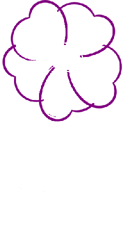 flower, pink, rosa, plant, nature