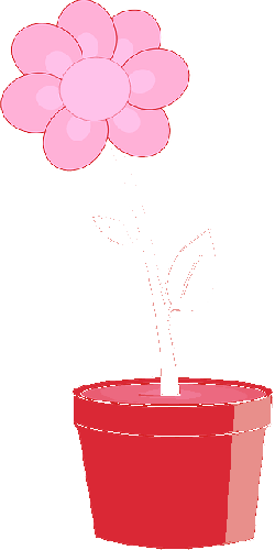 flower, pot, plant, planter