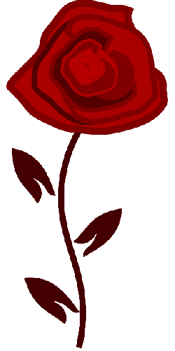 flower, rose, red, nature, plant