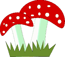fly, agaric, fungus, mushroom, poisonous, psychoactive