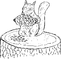 food, outline, drawing, tree, squirrel, cone, eating