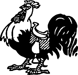 food, rooster, standing, saddle, feathers, barn, farm
