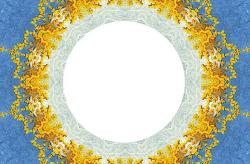 frame, floral, flowers, yellow, lace, paper, blue