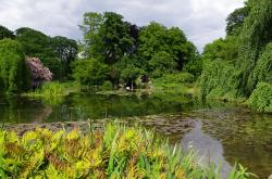 france, pond, water, trees, summer, spring, plants