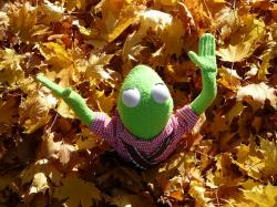 frog, kermit, green, doll, fig, autumn, leaves