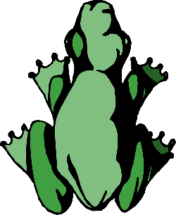 frog, top, green, view, amphibian, legs