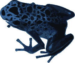 frog, water, blue, color, nature, animal, speckled