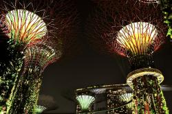 gardens by the bay, singapore, night, lights