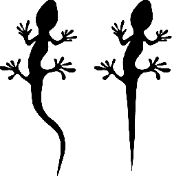 gecko, cold-blooded animal, lizard, iguana, reptile