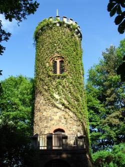 germany, tower, structure, ivy, plants, vine, vines