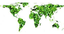 globe, leaves, green, environment, nature