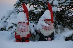 gnomes, garden gnome, winter, snow