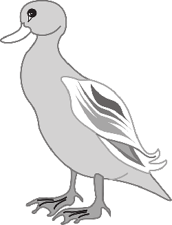 gray, digital, bird, duck, wings, art, animal, beak
