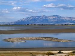 great, salt, lake, utah, usa, landscape, water