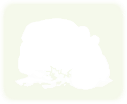 green, face, plants, cartoon, color, panda, with, plant