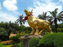 haikou city, china, sky, clouds, golden bull, statue
