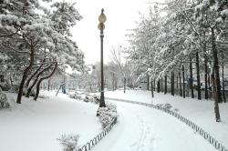 hanam city, hanam city hall, winter landscapes