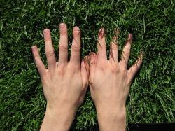hand, hands, grass, finger, meadow, green