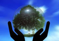 hands, protection, protect, tree, globe, earth, world