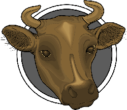 head, brown, cow, horns, animal, mounted, mount