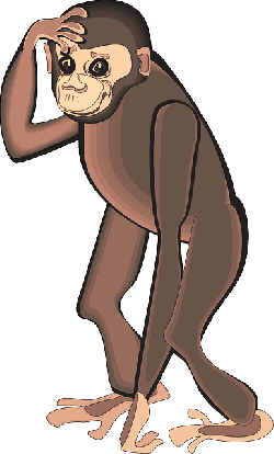 head, cartoon, art, standing, animal, chimp, scratching