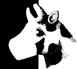 head, cow, style, art, animal, cutout