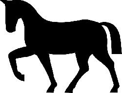 horse, riding, animal, mammal