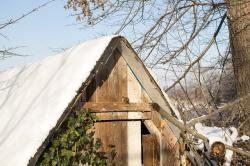 hut, bird, log cabin, animal, winter, sweet, snow