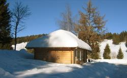 hut, roof, winter, snow, black forest, bank, baume