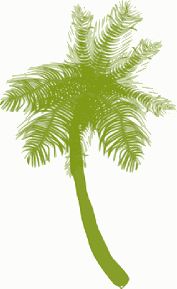 icon, food, fruit, drawing, silhouette, leaf, palm